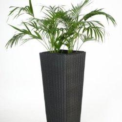"""floristikvergleich.de Blumenkübel Pflanzkübel Pflanzgefäße Übertöpfe Blumentöpfe aus Polyrattan """"Classic Design"""", 105cm, Schwarz"""