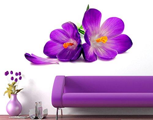Decals Design 'Flowers Beautiful Spring Crocus Lily Fresh' Wall Sticker (PVC Vinyl, 90 cm x 60 cm)