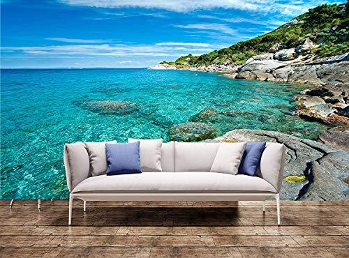 YBHNB Grandi Stampe Murali Spiaggia di Capo Bianco, Isola D'Elba Adesivo Murale Adesivo Arazzo da Parete-280X200Cm