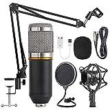 Xusiming Kondensatormikrofon Satz, Tragbarer professionelles Audio-Kondensatormikrofon, mit einstellbarem Mikrofon elastischen Scherenarm, für die Aufnahme und Ausstrahlung,Silber