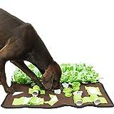 Multi-Schnüffelwiese 80 x 80 cm Schnüffelrasen Hund Schnüffelteppich Leckerlie Suchspiel für den Hund