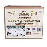 XXL Bio Champignon-Pilzzuchtset im Pilzzuchtkarton, ganzjährig Pilze selber züchten