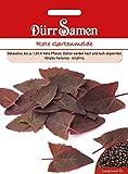 Rote Gartenmelde   Gartenmeldesamen von Dürr-Samen