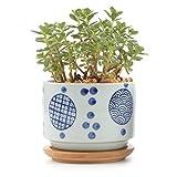 T4U Conjunto de 1 Cerámica Japonesa Estilo De Serie No.2 Cerámicos Planta Maceta Suculento Cactus Planta Maceta Planta Contenedor Vivero Maceta Macetas de jardín Macetas Envase