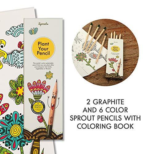 Matite Sprout - kit di colori per bambini   matite piantabili 6 colorate e 2 da disegno in grafite  ...