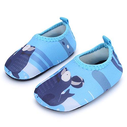JIASUQI Sneakers da Ginnastica per Bambini e Bambini Scarpette da Acqua a Piedi Nudi per Piscina da Spiaggia, Sigillo Blu 18-24 Mesi