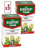 Richters TRANSIT - 5 x Tisana confezione di Ernst Richter da 20 bustine