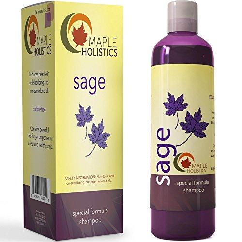 Vitamin Shampoo für Schuppen + Haarausfall - Anti-Schuppen Sulfatfreie Behandlung für gesunde Kopfhaut + Haarwachstum - Anti-Aging Schäden Reparatur mit Salbei - Linderung von Juckreiz, trockene Haut + dünner werdendes Haar
