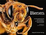 Bienen: 104 besondere Arten aus aller Welt in faszinierenden Nahaufnahmen