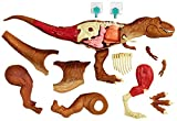 Jurassic World Kit de Anatomía de Tyrannosaurus Rex, (Mattel FTF13)