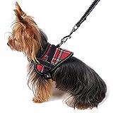 Dealmux réfléchissant Puppy Dog Harnais laisse réglable de petite taille pour animal domestique Chien Gilet de sécurité