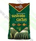 Mezcla Para Cactus Para Interior Y Exterior