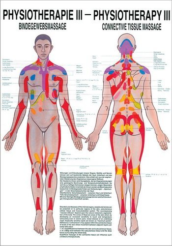 Ruediger Anatomie PHYS III - Lavagna per massaggio del tessuto connettivo, 50 x 70 cm, carta