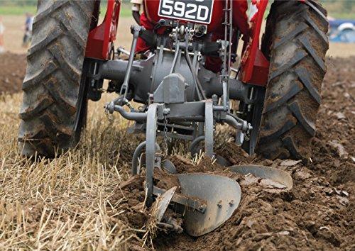 Massey Feguson Tractor arado Tarjeta de felicitación