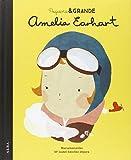 Pequeña & Grande Amelia Earhart
