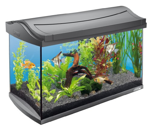 Tetra AquaArt Aquarium-Komplett-Set