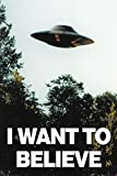 Maxi poster 61 x 91,5 cm di The X-files con stampa I Want To Believe.