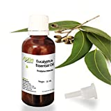 Allin Exporters Natural Eucalyptus Essential Oil, 30ml