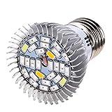 STRIR Bombilla para Crecimiento de Plantas Alta Potencia 28W 28 LED E27, Lámpara Luz para Vegetal Planta Flor de Florecimiento en Invernadero
