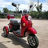 Mobilité électrique Scooter Handicapé élégante Scooter de voyage Vespa Nouveau style italien ZT-63 Trilux 3.0 Scooter électrique 3 roues Rouge