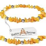 Baltic Secret Bernsteinkette Hund, Zeckenschutz Hunde, Baltischer Bernstein, Flöhe Hund, Bernsteinkette für Hunde, Zeckenschutz Katze