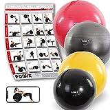 POWRX Ballon de Gymnastique - Balle de Gym Deluxe disponible en rouge, noir et gris anthracite et différentes tailles : 45 cm - 55 cm - 65 cm - 75 cm - 85 cm - 95 cm - 105 cm, pompe comprise