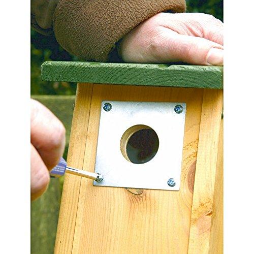 C J Wildbird Foods Limited C J Nest - Placca di protezione per casette per uccelli (32 mm) (Metallo)
