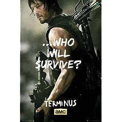 Póster The Walking Dead - Daryl Survive - cartel económico, póster XXL