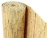 bambus-discount.com Schilfrohrmatten Premium Beach, 200 hoch x 600cm breit, EIN Produkt Sichtschutz Matten Windschutzmatten ...