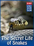 The Secret 25