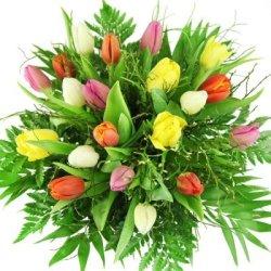 floristikvergleich.de Tulpenstrauß – Frühlingsblumen – Blumenstrauß mit bunten Tulpen – Geschenk für Frauen, beste Freundin, Mädchen, Mama oder auch Oma!