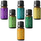 MayBeau Set de regalo de aceites esenciales de aromaterapia, 6 botellas/10 ml cada uno, 100% puro...