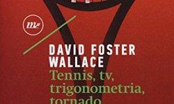% Tennis, Tv, trigonometria, tornado (e altre cose divertenti che non farò mai più) ebook gratis
