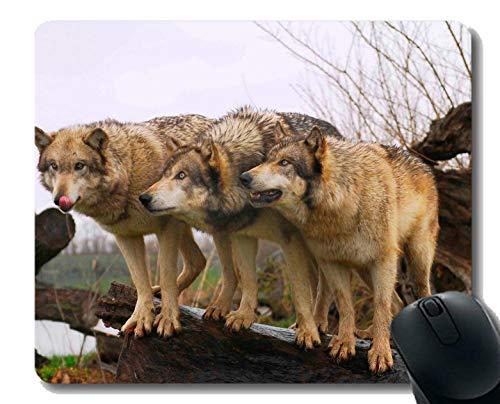 Yanteng Cojín de ratón del rectángulo, Estera Animal de Mousepad del Juego del Hacha del Lobo