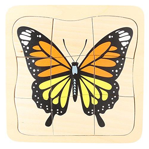 Sharplace Montessori Juguete de Educativo Madera Ciclo Vive Puzzle para Bebé Niños - Mariposa