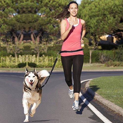 Topist Manos Libres Perro Cinturón, Ideal para Correr, Jogging, Senderismo absorción de Golpes Plomo y cinturón de Cintura Ajustable, Tanto con Costuras Reflectantes de Alta Visibilidad