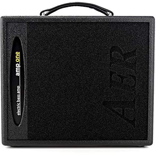 AER Amp One bass guitar amplifier combo, 200 watts