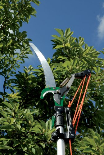 The Draper Expert 32mm Diameter Tree Pruner uses the same principle as the Spear & Jackson Telescopic Pruner model. It incorporates a sawing blade for those thick branches and a cutting blade operated by a nylon string all under one structure.