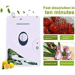 Zunate Generatore di ozono, Ozonizzatore di purificatore d'Acqua all'ozono, sterilizzatore di detergenti per casa, Acqua, Verdura, Frutta e Altro