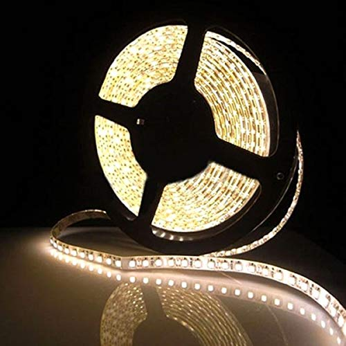 TRP TRADERS Water Proof 4Meter SMD 3528 LED Flexible Strip Tape 300 LED Light for Home Decor, Automobile, Indoor & Outdoor Lighting Rope + Free 12 Volt DC LED Driver (Warm White)