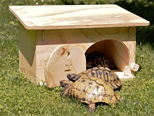 Terrari da esterno per tartarughe di terra vita da tartaruga for Tartarughe vaschetta