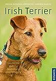 Irish Terrier: Geschichte, Haltung, Ausbildung, Beschäftigung