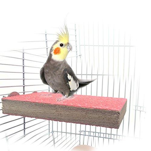 XMSSIT osatoio piatto in legno per gabbiette, per uccelli, pappagalli, are macao, pappagalli...