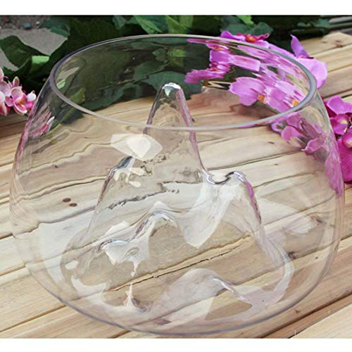 SLB Works Clear Glass Vase Fish Tank Goldfish Aquarium Bowl Home Terrarium Decor, 18Cm C4O6