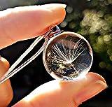 Catena in argento sterling Collana di tarassaco pendente CONFEZIONE REGALO - collana da sposa gioielli damigella d'onore gioielli di compleanno