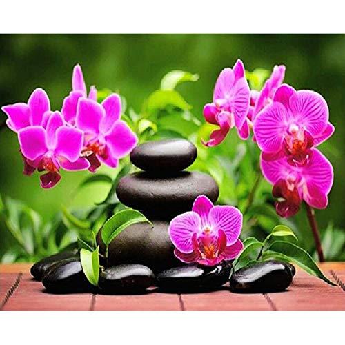MAIYOUWENG Puzzle Collection 1000 Pezzi- Orchidea E Pietra Zen 1000 Pezzi di Legno Jigsaw Puzzle