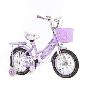 LBYMYB Bicicletas For Niños, Bicicletas For Niños Y Niñas Al Aire Libre, Carritos De Bebé con Scooters con Ruedas Auxiliares 12/14/1618 Pulgadas Bicicleta para niños (Color : Purple, Size : 18Inch)