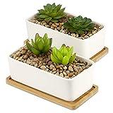 Pot à plantes en céramique et base en bambou | Jardinière succulente d'intérieur et d'extérieur | Pots blancs de cactus et de petites plantes d'intérieur | M&W (x2 Rectangulaire)