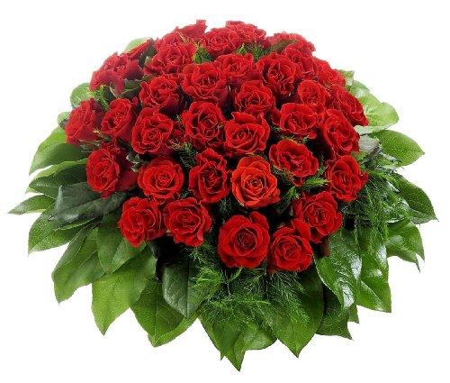 floristikvergleich.de Dominik Blumen und Pflanzen, 36 Rote Rosen, 1Strauß