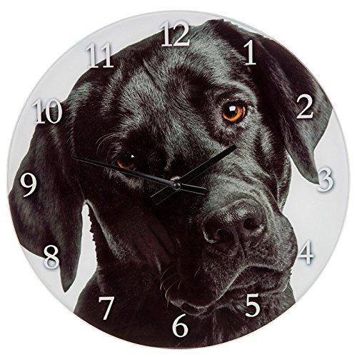 Westie 57654 - Orologio da parete o da mensola in vetro, 17 cm, modello labrador nero